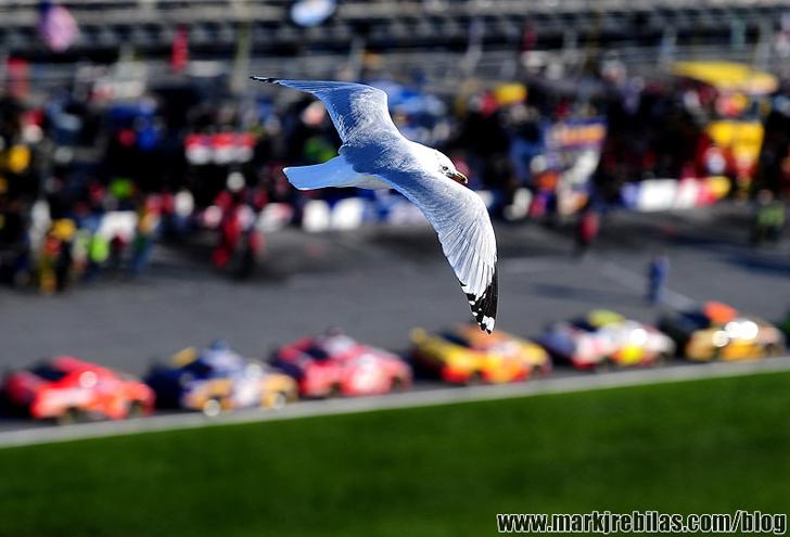 NASCAR Sprint Cup Series: Daytona 500
