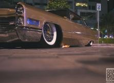 gulf-car-festival-10