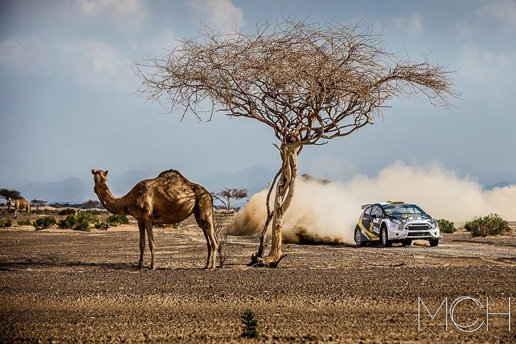 2015 Dubai International Rally-7