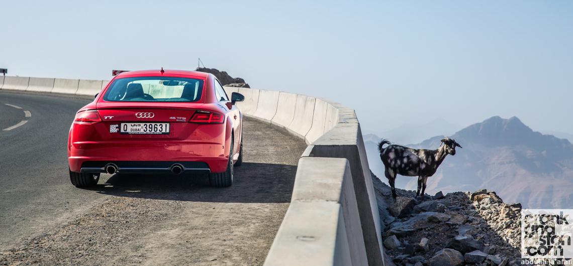 Audi TT. New arrival. Management Fleet