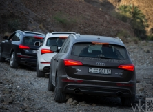 audi-q5-s-line-management-fleet-november-68