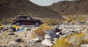 Audi Q5 S-Line. Management Fleet (September)