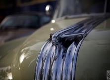 emirates-classic-car-show-details-13