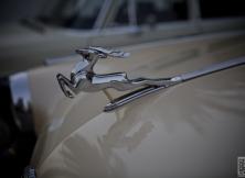 emirates-classic-car-show-details-2