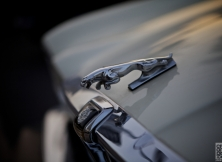 emirates-classic-car-show-details-6