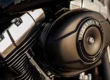 Harley-Davidson Fat Boy Special 2