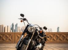 Harley-Davidson Fat Boy Special 5