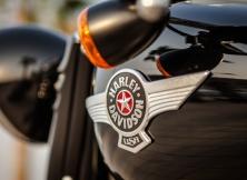 Harley-Davidson Fat Boy Special 10