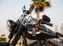 Harley-Davidson Fat Boy Special 14