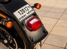 Harley-Davidson Fat Boy Special 16