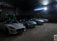 jaguar-f-type-gf-williams-005