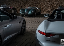 jaguar-f-type-gf-williams-009