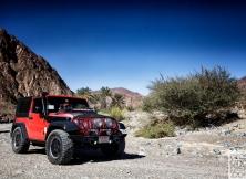 jeep-jamboree-dubai-uae-14