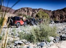 jeep-jamboree-dubai-uae-15