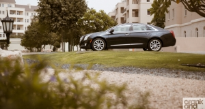 Management Fleet. Cadillac XTS