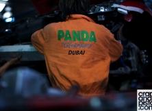 panda-performance-2