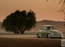 Phil\'s Volkswagen Beetle 10