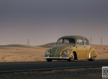 Volkswagen Beetle 08
