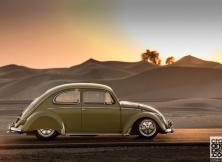 Volkswagen Beetle 05