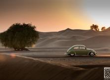 Volkswagen Beetle 01