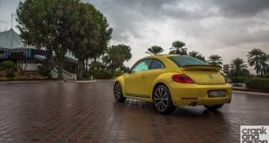 Volkswagen Beetle. Management Fleet (February)