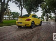 volkswagen-beetle-management-fleet-february-3