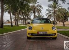 volkswagen-beetle-management-fleet-february-4