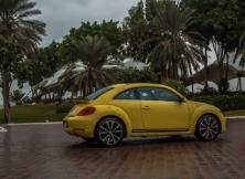 volkswagen-beetle-management-fleet-february-6