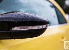 volkswagen-beetle-management-fleet-february-9