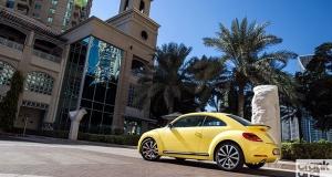Volkswagen Beetle. Management Fleet (January).