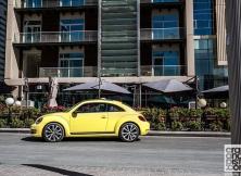 volkswagen-beetle-management-fleet-january-01