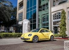 volkswagen-beetle-management-fleet-january-05