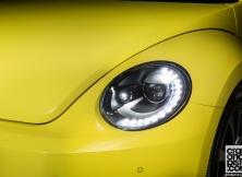 volkswagen-beetle-management-fleet-march-6