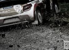 2013-world-rally-championship-rally-great-britain-01