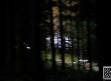 2013-world-rally-championship-rally-great-britain-05